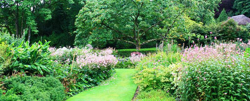 Green Parrot Gardens   Successful Planning   Classic English Garden Scheme