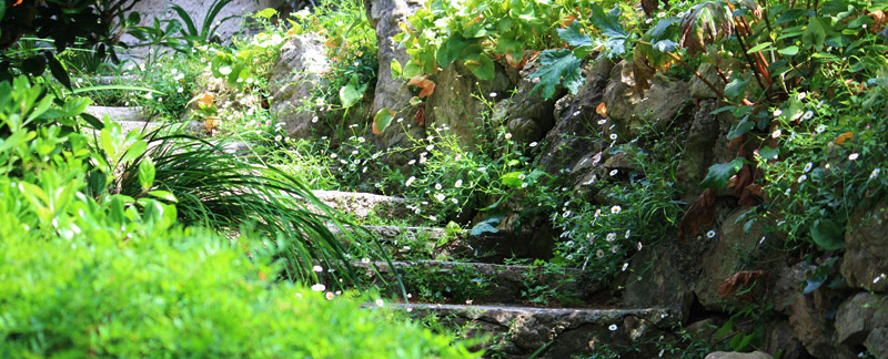 Green Parrot Gardens | Idea Development | Rock Garden Steps, Garden near Grimaud, French Riviera