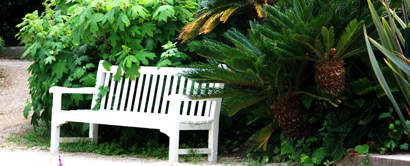Green Parrot Gardens | Your Garden Style | Classic Mediterranean Garden Style