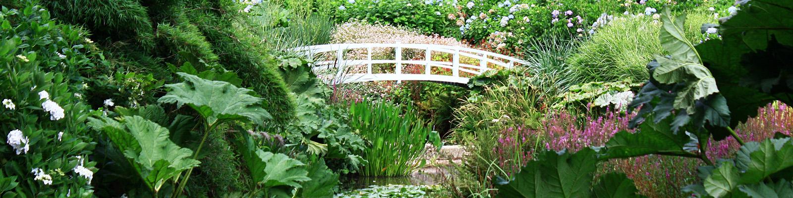Green Parrot Gardens | Why You Need a Garden Designer | Bridge