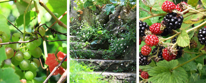 JardinTrouve_03
