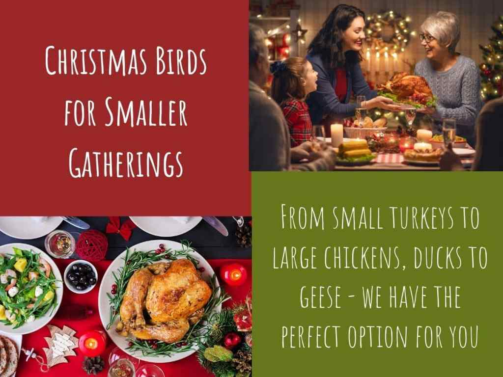 Christmas Birds for Smaller Gatherings