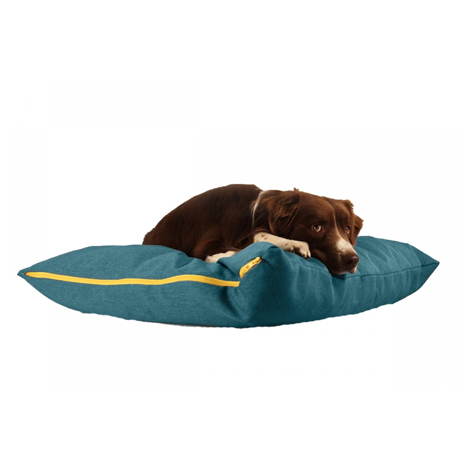 buddy dog pillow petrol blue sustainable resting place for dogs