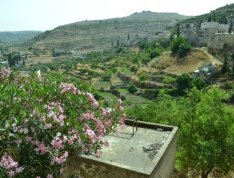 A Village Called Battir