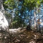 Sentiero 1 - Il Passo del Lupo