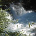 Sentiero 6 - Cascatelle del Fiume Sentino