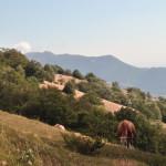 Sentiero 4 - Visioni Bucoliche