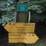 Sentiero 20 - Incrocio sentiero 33 - Ranco Cerasa