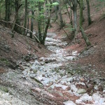 Sentiero 31 - Il Fosso