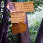 Sentiero 226 - Incrocio 240 in Valrachena alta