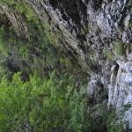 Sentiero 238 -La Gola delle Gorghe