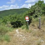 Sentiero 238 - La mulattiera vista dalla SP a Costa Poggio Alto