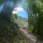 Pollino trek - Salita al Passo di Malevento