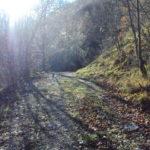 Sentiero 283 - Mulattiera con fango...