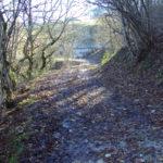 Sentiero 283 - Conservone e Mulattiera
