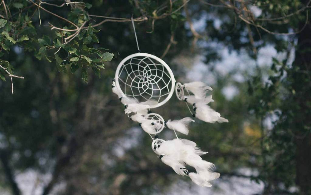 A dream catcher hanging off a tree to represent Executive and Leadership Career Coaching