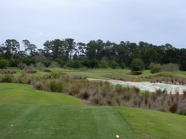 Eagle Creek Golf Club Orlando Florida. Hole 11 Par 3