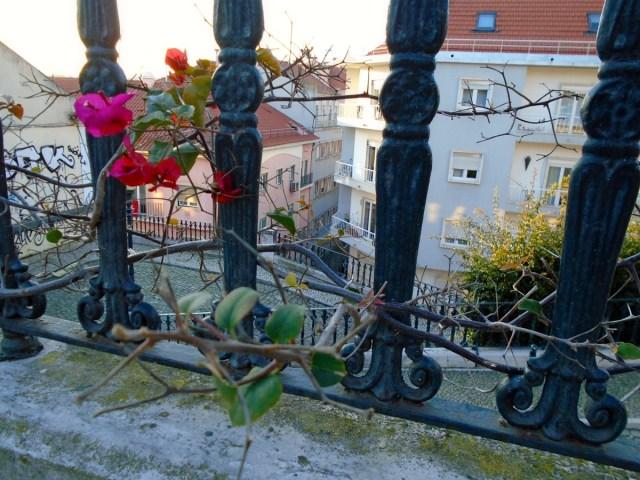 Wie Gitterstäbe - Ein Blick durch ein Geländer in Lissabons Príncipe Real.