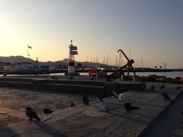 An einem Ruhetag auf Ägina sitze ich am Hafen und sehe dem Schiffstreiben auf dem Wasser zu.