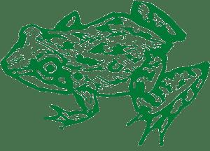 FrogTech