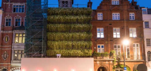 rup-grosnover living wall scaffolding