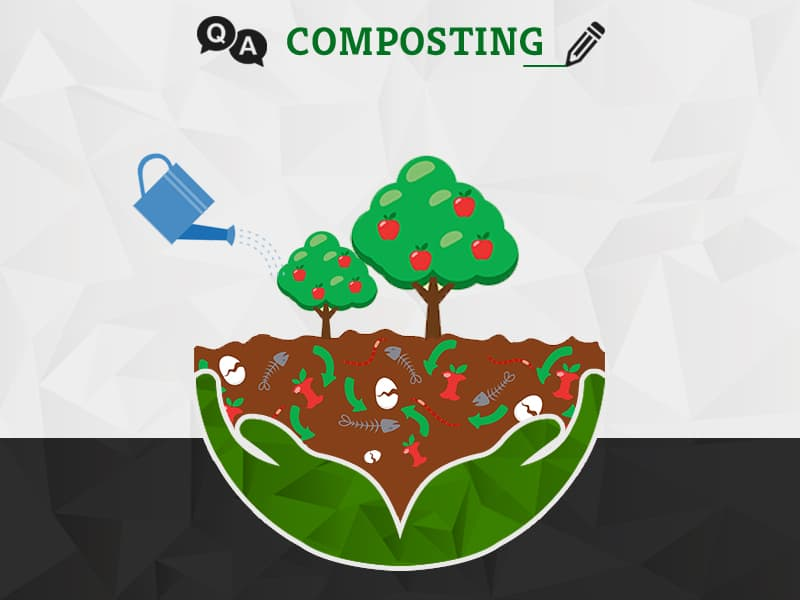 Composting Related Questions | GreenSutra | India