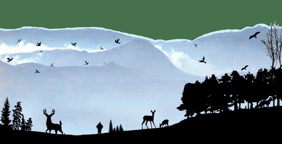 Climate Change Threatens Nilgiri Biosphere