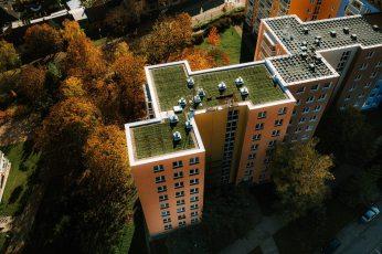 zelena-strecha-na-panelovem-dome4