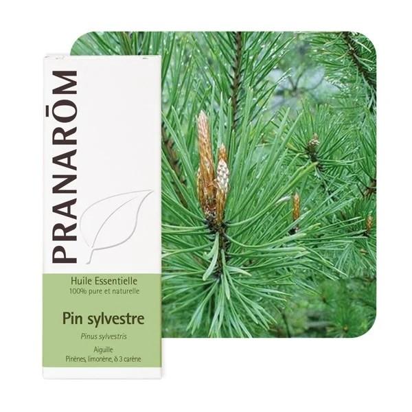 huile essentielle de pin sylvestre