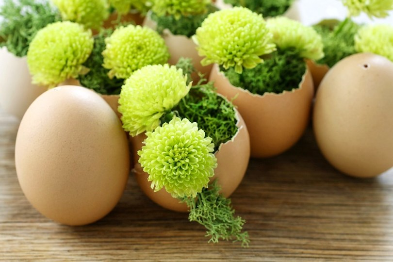 utiliser les œufs de Pâques comme pots de plantes