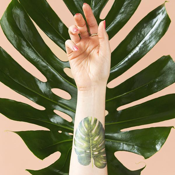 Monstera tatto from_tattly_design by vincent_jeannerot