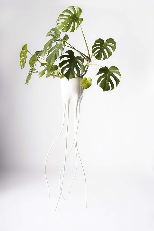 Monstera Magnifica planter by Tim van de Weerd 2