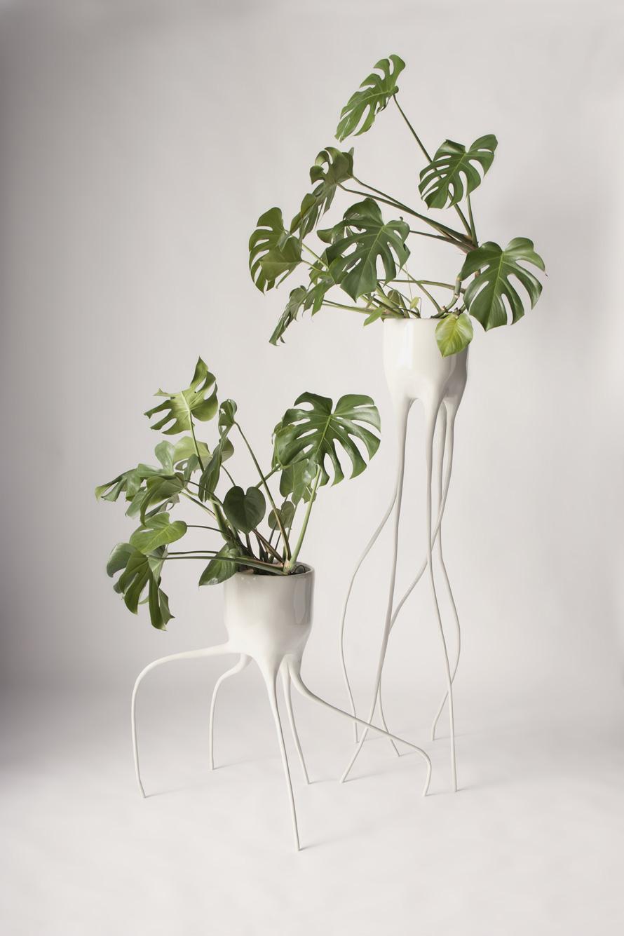 Monstera planters by Tim van de Weerd 3