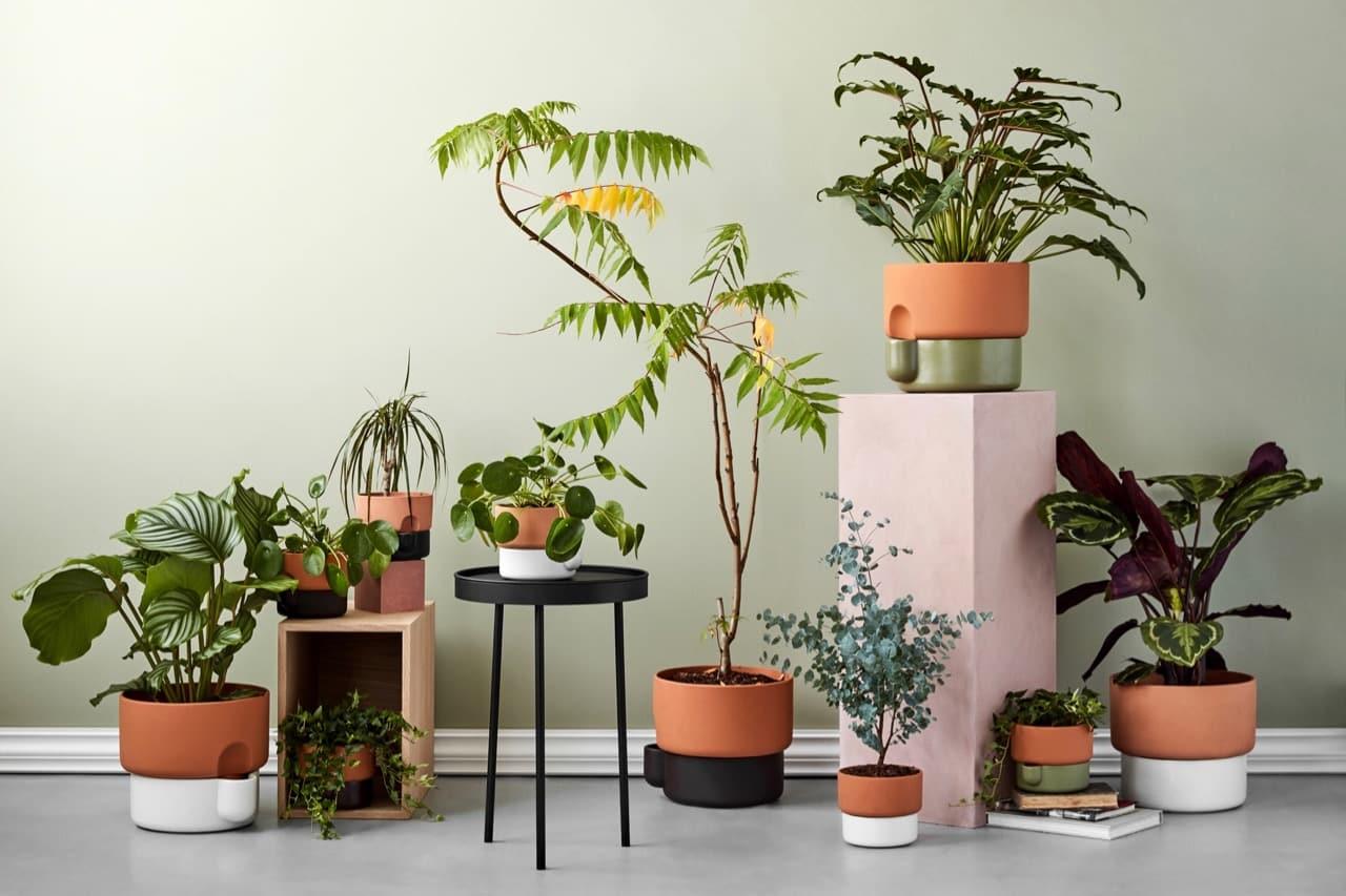 Oasis self-watering pot by Ann Kristin Einarsen on Green with Purpose & Self-watering Terracotta Planter from Scandinavian Brand Northern ...