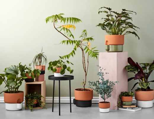 Oasis self-watering pot by Ann Kristin Einarsen on Green with Purpose