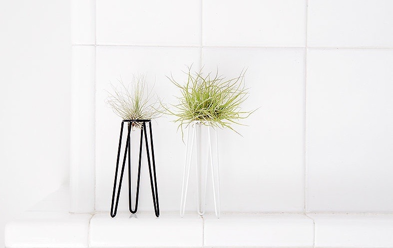 Airplant table-top display (white) from Studio Hali-Ann Tooms