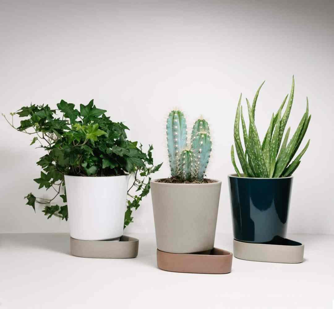 Sip by Ann Kristin Einarsen for Case Furniture