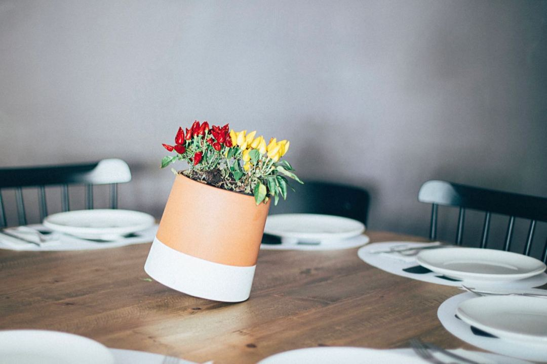 Voltasol flower pot centerpiece (by We Are Living Things)
