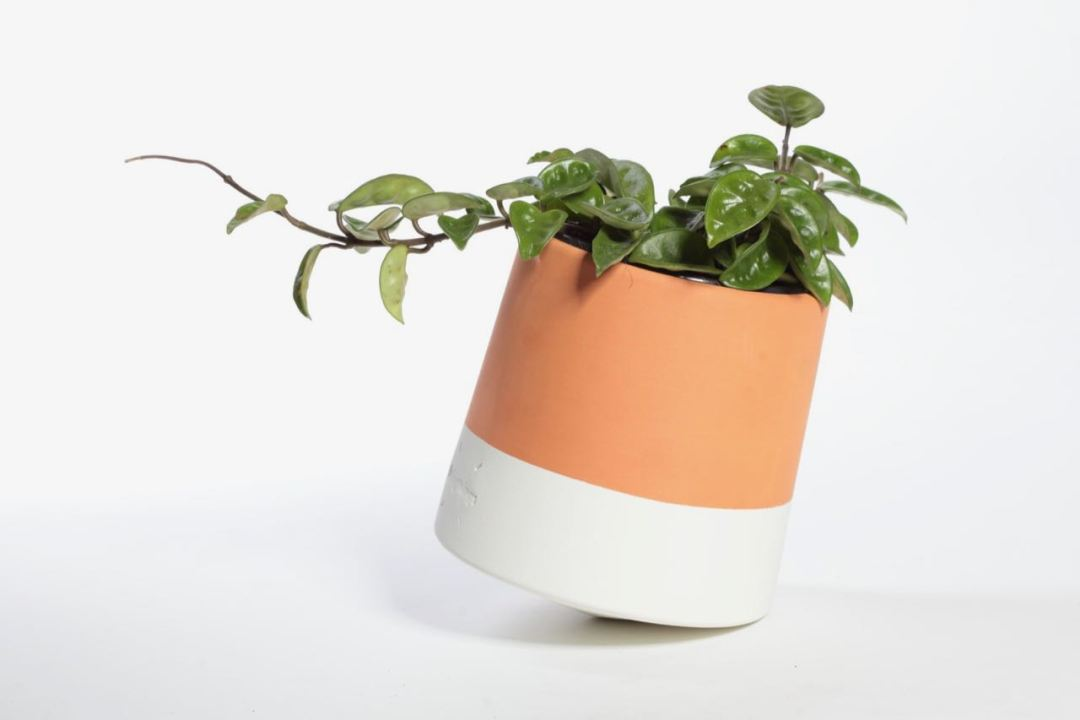 Voltasol flower pot mint by We Are Living Things