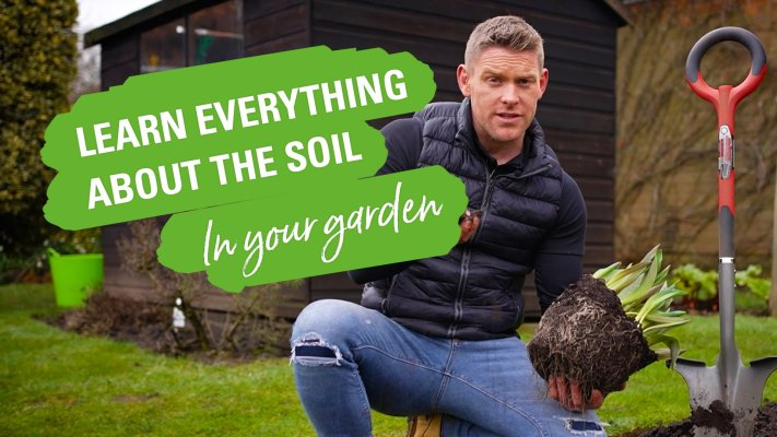 Learn everything you need about soil.
