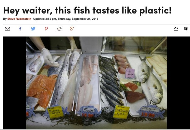 A significant amount of synthetic clothing fibers have been found inside fish caught off the Northern California coast and ending up on local dinner plates, according to a new study by environmental scientists at UC Davis. About a quarter of the 64 fish purchased at fish markets in Half Moon Bay and Princeton and analyzed for the study turned out to have bits of synthetic clothing in their guts, said lead researcher Chelsea Rochman, of the UC Davis School of Veterinary Medicine.