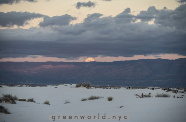 White Sands, New Mexico 12-24-15