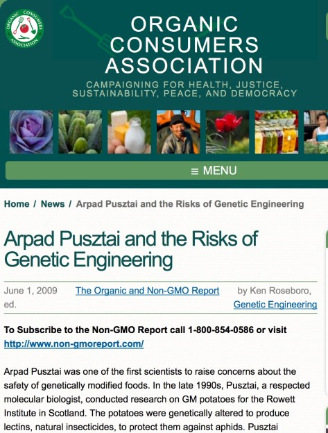 Arpad Pusztai was one of the first scientists to raise concerns about the safety of genetically modified foods. In the late 1990s, Pusztai, a respected molecular biologist, conducted research on GM potatoes for the Rowett Institute in Scotland. The potatoes were genetically altered to produce lectins, natural insecticides, to protect them against aphids. Pusztai conducted feeding studies on rats and found that the potatoes damaged the animals' gut, other organs, and immune system. In 1998, Pusztai expressed his concerns about GM foods on a British television program and was promptly suspended and forced to retire from his position. Dr. Pusztai's research was later peer reviewed and published in The Lancet, a leading British medical journal. You were initially supportive of genetically modified foods, is that correct? Yes, I thought at the time on the basis of rather poor understanding of genetic modification that it was a good idea. As we progressed with our experimental work we found all the snags and I had to re-assess my ideas. What negative impacts did you find with GM potatoes you were developing? The first problem that we encountered was when we tried to correlate the protection of the potato plant leaves against aphid attack with the transgene expression level. We found there was very little or no correlation at all. That is a major flaw, sufficient to question the validity of the whole idea. The next was that the transgenically expressed insecticidal protein did not only damage the aphid pests but also their natural enemies, such as the ladybugs. What was particularly damaging for the validity of genetic modification was when we found that diets based on GM potatoes affected the growth, organ development, and immune reactivity of young rapidly growing rats. The final straw was when we showed that the damage originated not from the transgene and its expressed product but from the damage caused by the insertion of the transgene, probably due to insertional mutagenesis.