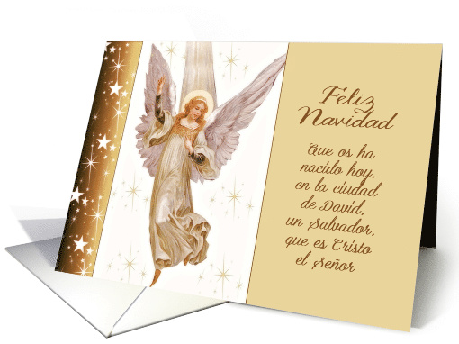 Feliz Navidad Spanish Merry Christmas Translation Luke 211 Card