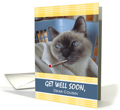Get Well Soon For Cousin Siamese Cat With Thermometer And