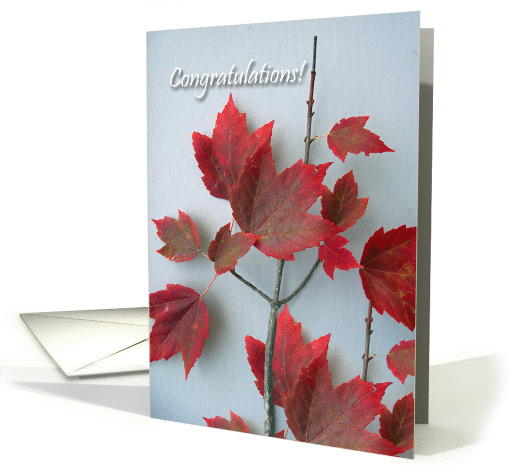 Congratulations On Canadian Citizenship Maple Leaves Card
