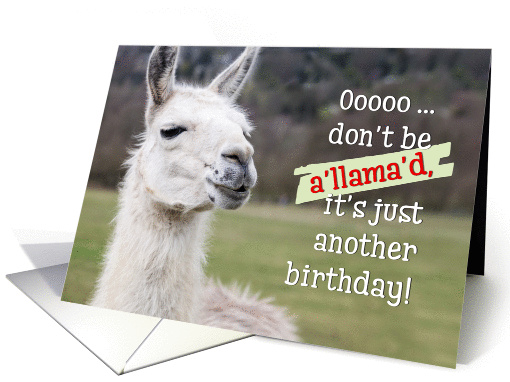 Humorous Birthday Card The Happy Llama Card 1371918