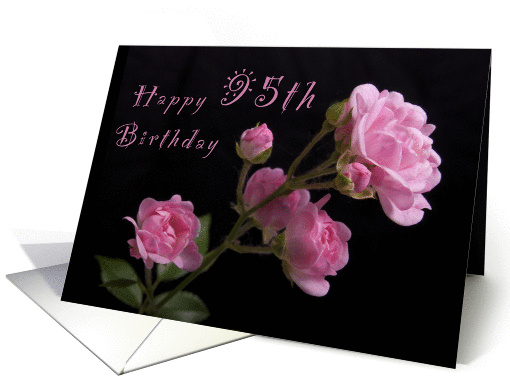 Happy 95th Birthday Pink Roses Card 1063411