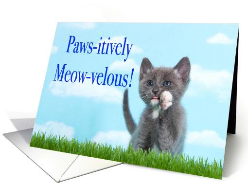 Congratulations Cat Adoption Card 1438700