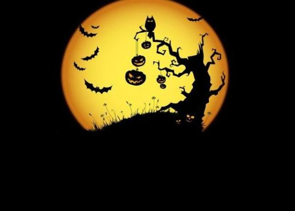 Happy Halloween WhatsApp Dp, Facebook Cover Pictures ...